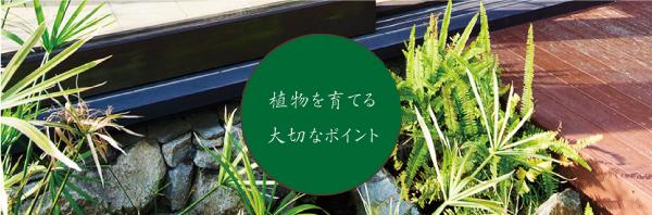 web017_004