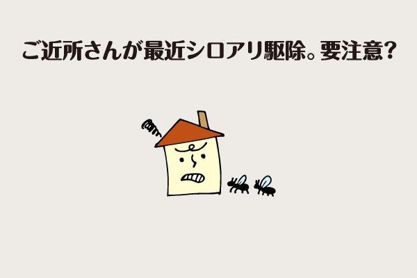 web055_005