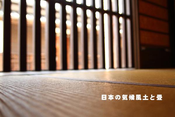 web50_001